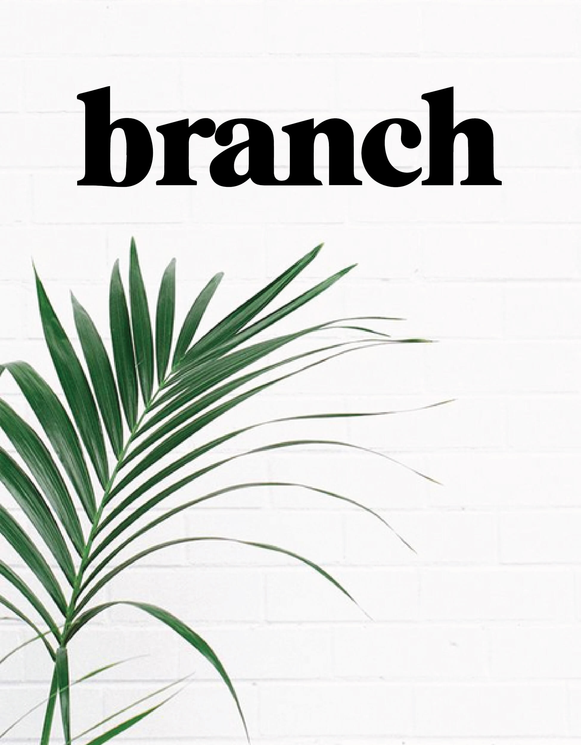 Branch Creative